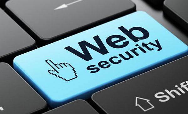 What is website security and why do you need it