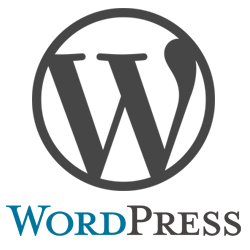 WordPress – Top reasons why you can and should use it to run your business website